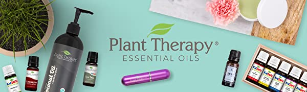 plan therapy essential oils