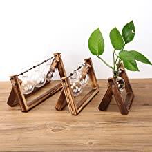 bulb planter  Ivolador Desktop Glass Planter Bulb Vase with Retro Solid Wooden Stand and Metal Swivel Holder for Hydroponics Plants Home Garden Wedding Decor (3 Bulb Vase) 08a3f2e4 12ce 473c 96cb c84410a29bc3