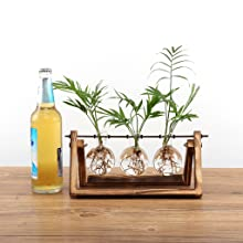 bulb planter  Ivolador Desktop Glass Planter Bulb Vase with Retro Solid Wooden Stand and Metal Swivel Holder for Hydroponics Plants Home Garden Wedding Decor (3 Bulb Vase) 267a3521 3bb1 4eca 90b1 4e307cc01d94