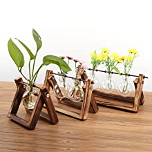 bulb planter  Ivolador Desktop Glass Planter Bulb Vase with Retro Solid Wooden Stand and Metal Swivel Holder for Hydroponics Plants Home Garden Wedding Decor (3 Bulb Vase) 7ff47332 060f 4b72 838e ac1bbb51042b
