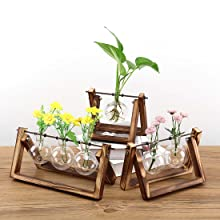bulb planter  Ivolador Desktop Glass Planter Bulb Vase with Retro Solid Wooden Stand and Metal Swivel Holder for Hydroponics Plants Home Garden Wedding Decor (3 Bulb Vase) 8b96b072 cb85 44d5 bb0d 29694af9e427