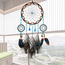 Peacock Feather dream catcher