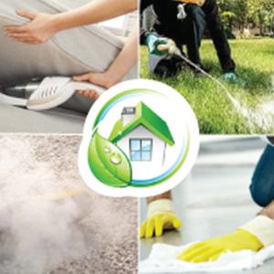 flea spray for home