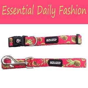 Essential Daily Fashion