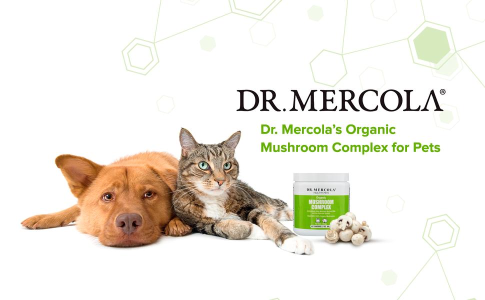 Amazon.com: Dr. Mercola la seta Complejo para toda Pets ...