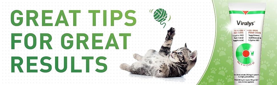 Viralys Lysine Powder Cats Palatable Tuna Flavor Immune Support Feline Herpes Virus FHV Supplement