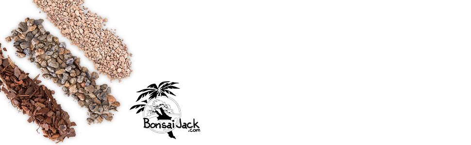 bonsai jack succulent and cactus garden soil