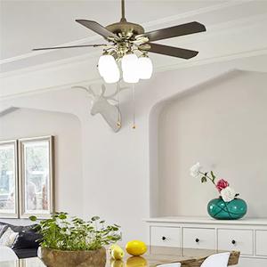 ceiling fan home garage warehouse led bulbs
