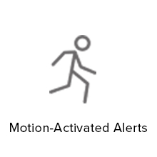 motion activated alerts