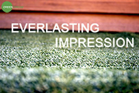 BEAUTIFUL DESIGN: The Green Dream Artificial Grass Area Rug Has The Perfect  Blend Of Colors To Create A Look That Will Leave A Ever Lasting Impression.