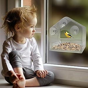 Baby sees Bird