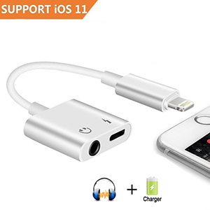 Sprtjoy 2 in 1 Lightning Adapter for iPhone X/8/7/6 Plus