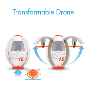 Transformable Drone