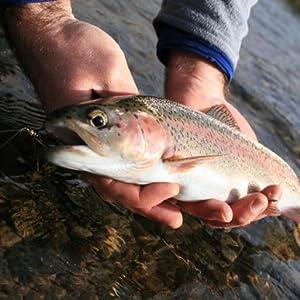 trout fishing net