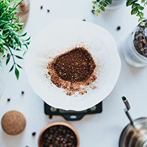 Coffee Ground in Chemex with white filter on white background with greenery, kettle, coffee beans