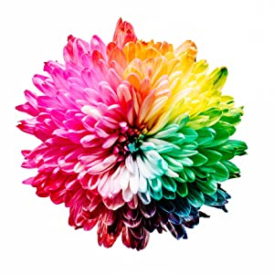 Explosive Color