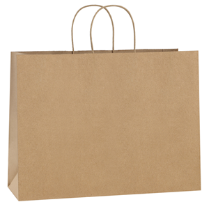 BagDream 100Pcs 16x6x12 Inches Kraft Paper Bags with Handles Bulk Gift Bags Shopping Bags for Grocery, Mechandise, Party, 100% Recyclable Large Brown ...
