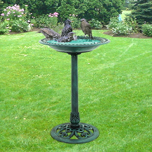 Timeless And Eye Catching, Avid Birdwatchers Use Bird Baths To Attracts  Various Species Of Birds To Gardens, Patio Area, ...