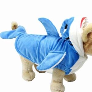 dog cosplay