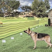 electronic dog fence, dog fence, invisible fence, fence collar