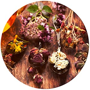 Anti Aging Serum Organic Face Oil Sea Buckthorn Neroli Rosehip Argan Helichrysum Comfrey CoQ10