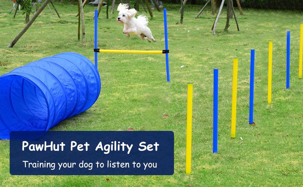 PawHut Backyard Competitive Dog Agility Training Kit ...