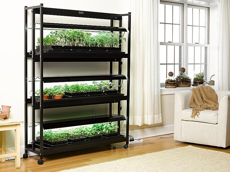 Amazon.com : Indoor Grow Light, 3-Tier Stand SunLite Light ...