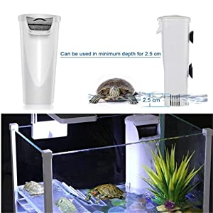 Turtle Filter