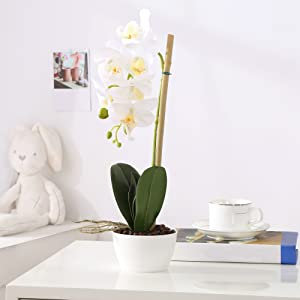white fake orchid flower on the table