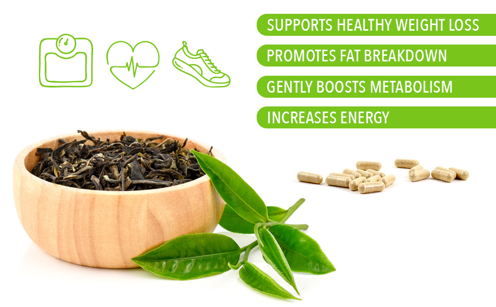 This green tea extract supports healthy weight loss, promotes fat breakdown and increases energy