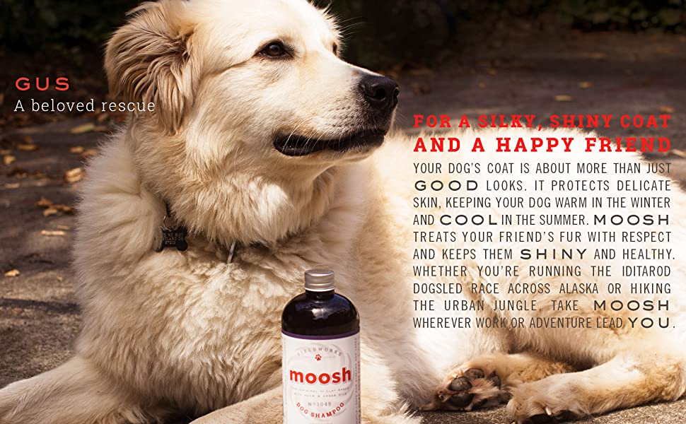 Moosh all-natural dog shampoo No Chemicals