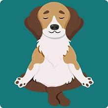 dog hemp oil anxiety stress