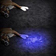 Pet Urine Detector