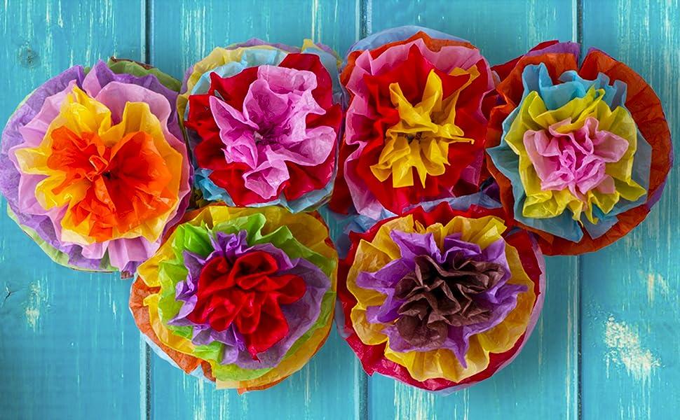 015d77d242d Amazon.com  Cinco De Mayo Decorations Fiesta Tissue Pom Paper ...