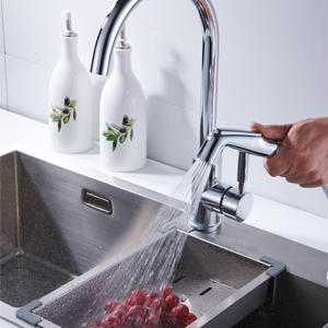 Sink Sprayer Hose and Holder