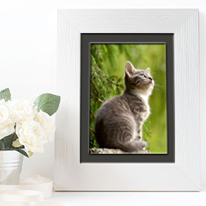 picture frame, photo frame