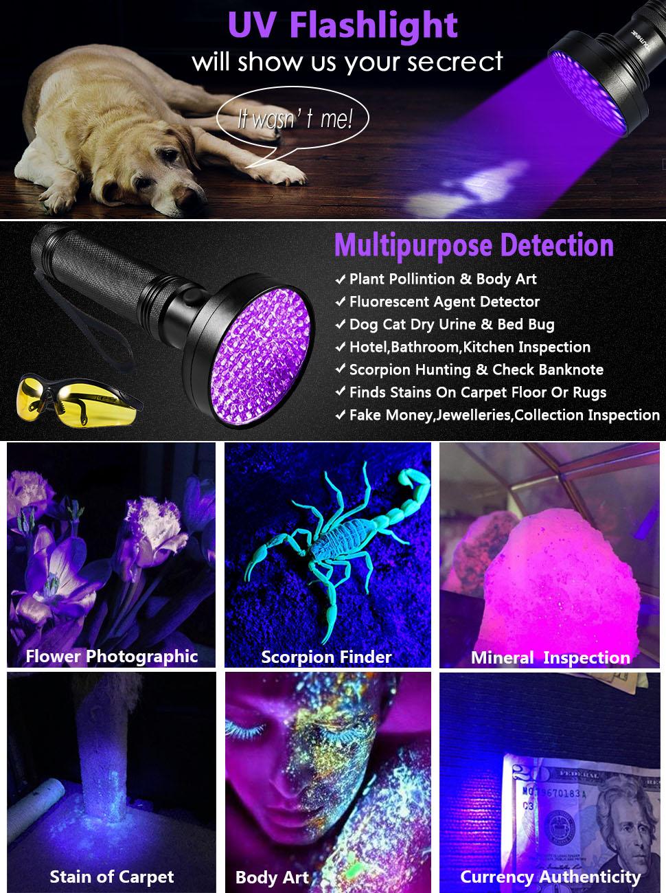 Amazon Com Uv Flashlight Blacklight Ultraviolet Black