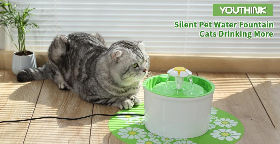 Amazon.com : Cat Water Fountain, 1.6L Auto Circulating Pet Water ...