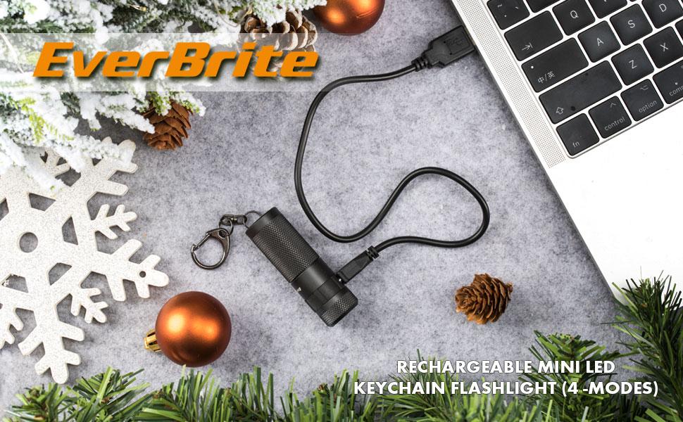Amazon.com: EverBrite Linterna LED Llavero, Ultra Brillante ...