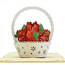 Cutepopup- Rose flower