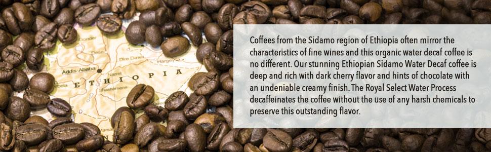 Ethiopian Sidamo Water Processed Decaf FTO Coffee, Whole Bean, Fresh  Roasted Coffee LLC (5 lb )