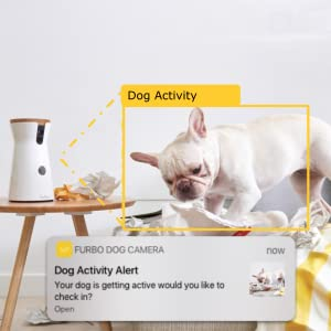 pet camera reviews : Dog motion detect