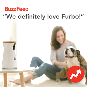 pet camera reviews : Furbo on Buzzfeed