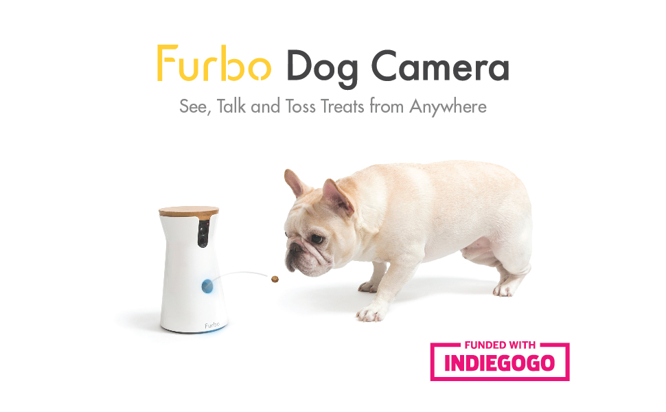 With input from over 5000 vets professional dog trainers and dog parents furbo dog cameras features are designed specifically for dogs