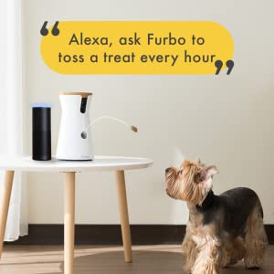 pet camera reviews : Furbo - live streaming your pet activity to you