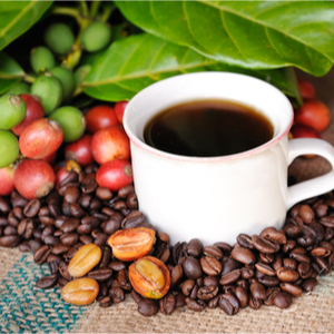 hot coffee in a cup roasted and ripe  beans