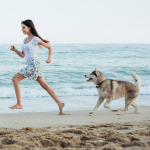 chewable glucosamine treats dog natural chondroitin msm vitamin c yuccahip joint supplement