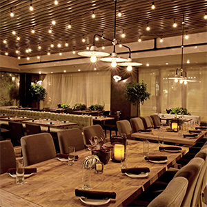 The bulbs can also be placed in places where dimming of lights is necessary. These LED lights give off a warm inviting golden soft glow when used in table ...