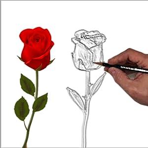 DeFaith 24K Gold Dipped Real Rose - Designed for love