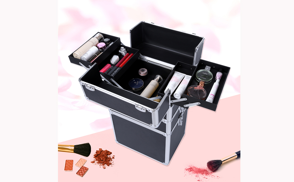 Amazon.com : Professional Makeup Train Case, Portable Aluminum ...
